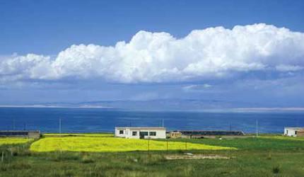 【行游西北·境遇西海】西宁-塔尔寺-茶卡盐湖-青海湖2日游