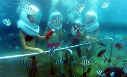 巴厘岛阳光乐享常规7日游