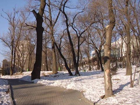 乌苏里斯克市