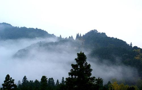 福寿寺之后的夏季牧场之旅