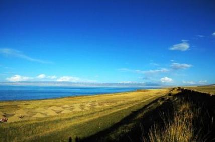 青海湖自然保护