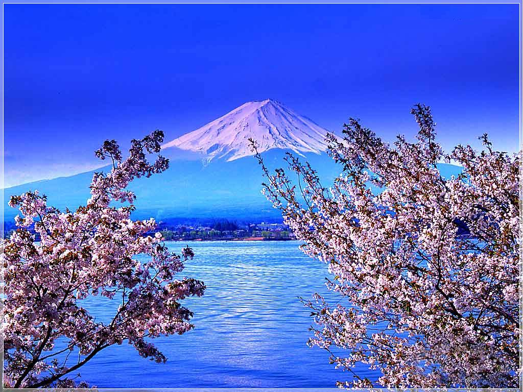 日本诚品东京大阪京都富士山箱根7日游