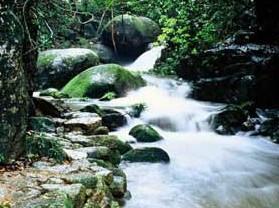 上甘岭溪水国家森林公园