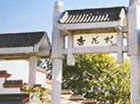 千古杏花村